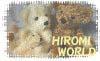 Teddy Bear Factory HIROMI WORLD